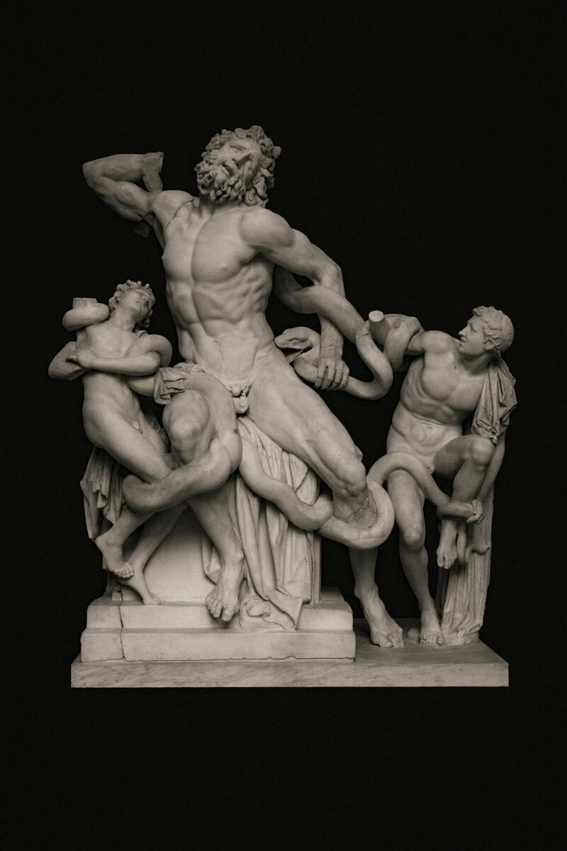 PRO ROMANIS ART Laocoön and His Sons - Sepia